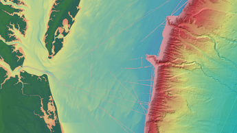 NCEI bathymetry layers